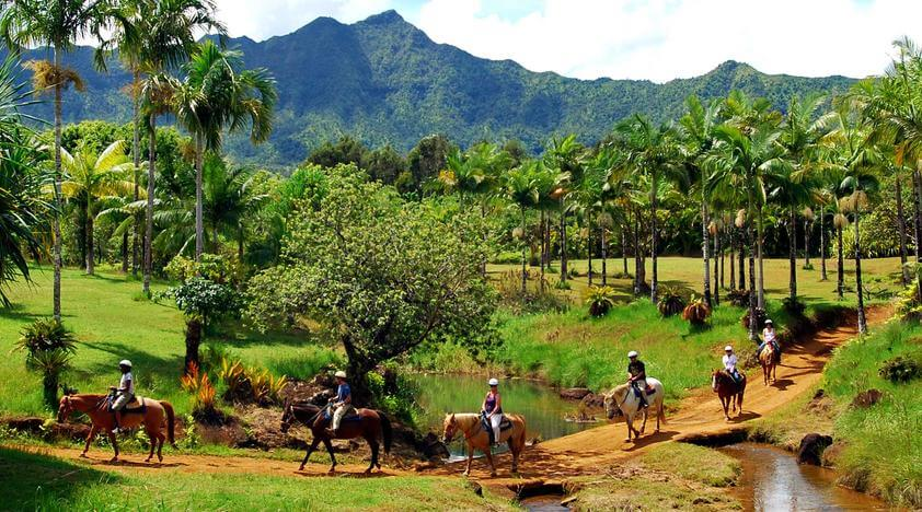 Tamarindo Horseback Riding Tour