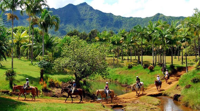 Tamarindo Horseback Riding Tour