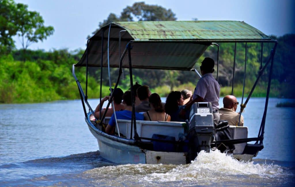 Tamarindo Estuary Boat Tour