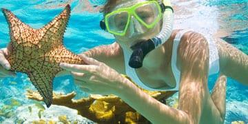Tamarindo Snorkeling