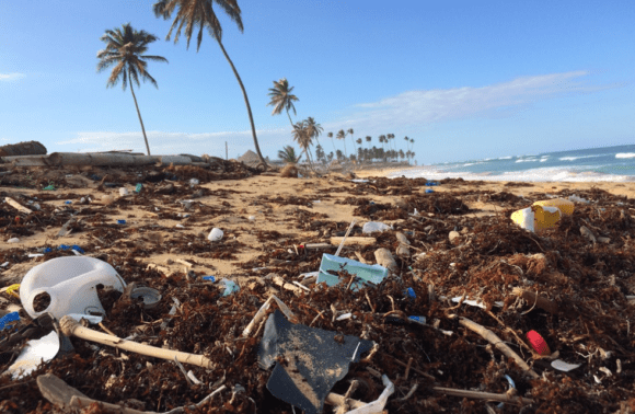 Protect Our Oceans on Your Costa Rica Surf Trip