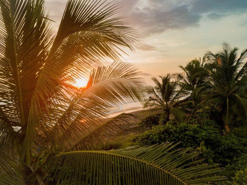 Costa Rica Surf – Top Summer Spots