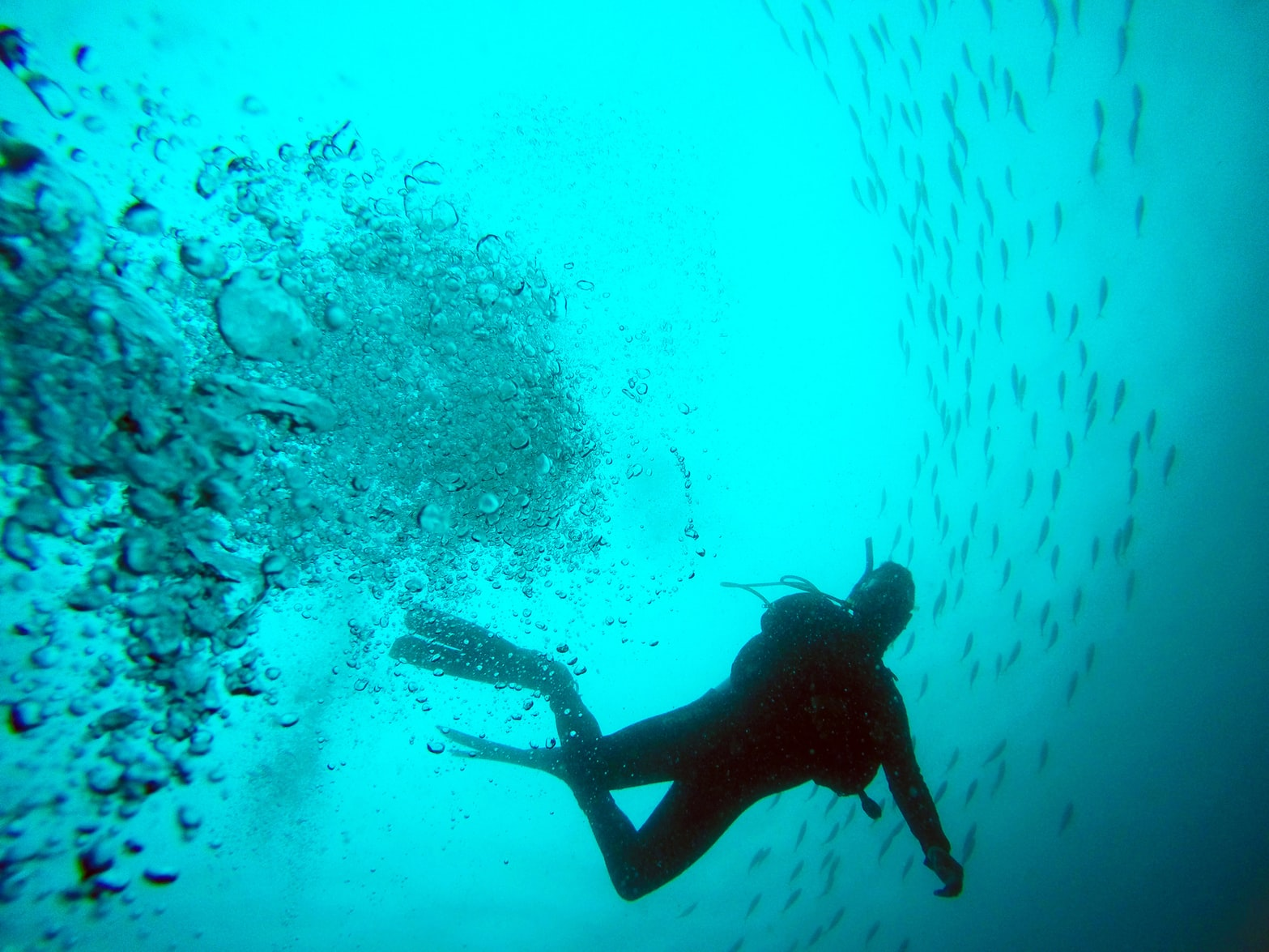 tamarindo scuba diving